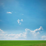 Green Meadow Landscape Stock Image