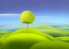 Green meadow with lonely tree Stock Photo