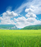Green meadow in mountain Royalty Free Stock Photo