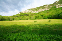 Green meadow and mountain. In chartreuse (france) under an impressive grey sky Stock Images