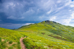 Green meadow in mountain. Royalty Free Stock Photography