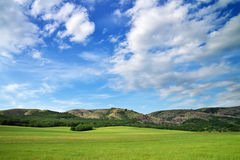Green meadow in mountain. Royalty Free Stock Image