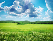Green meadow in mountain. Stock Images