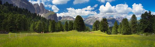 Green meadow with mountains on backgound, the Dolomites royalty free stock photography