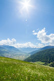 Green meadow in the mountains Stock Images