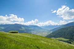 Green meadow in the mountains Royalty Free Stock Images