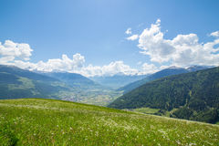 Green meadow in the mountains Stock Photography