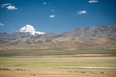 Green meadow and Mt.Kailash , Tibet Stock Photography