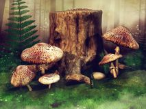 Green meadow with mushrooms and trees Stock Images