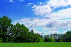 Green meadow nad wood Royalty Free Stock Photography