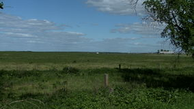 Green meadow next to farm. Meadow next to farm in summer day stock footage