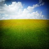 Green meadow and nice sky Royalty Free Stock Photography