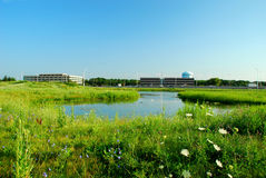 Green meadow and office buildings. Green summer meadow and pond, with commercial office buildings, a highway, and a water tower in the background. White heron in royalty free stock photography
