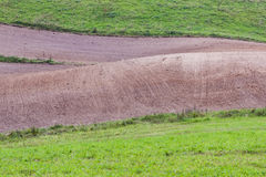 Green meadow and ploughed field. Royalty Free Stock Image