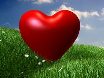 Green meadow with red heart Royalty Free Stock Photography