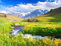 Green meadow and river Royalty Free Stock Photo