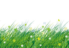 Green meadow, seamless pattern for your design Royalty Free Stock Photos