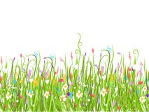 Green meadow, seamless pattern for your design Royalty Free Stock Photography
