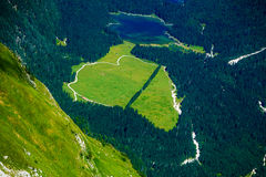Green meadow in the shape of a heart, surrounded by trees. simbol overshooting heart. Royalty Free Stock Photo