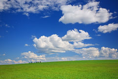 Green meadow, sky, clouds Stock Image