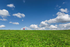 Green meadow and sky with clouds Royalty Free Stock Images