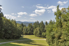 Green meadow in Slovenian mountains Stock Photography