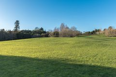 Green meadow with some trees under a clear blue sky. In Hamilton Botanical Gardens New Zealand Stock Photography