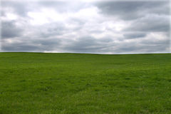 Green meadow, stormy sky Stock Photography