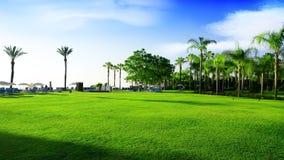 Green meadow in Turkey Royalty Free Stock Photos