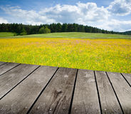 Green meadow under blue sky with clouds and empty wooden deck table. Royalty Free Stock Photo