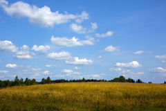 Green meadow under blue sky with clouds of white Royalty Free Stock Photo