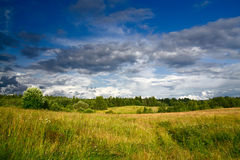 Green meadow under dramatic sky landscape Royalty Free Stock Photos