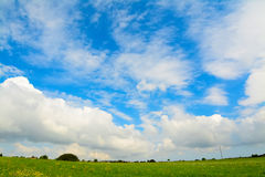 Green meadow under a scenic sky Stock Image
