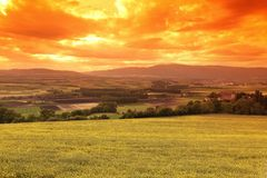Green meadow under sunset sky. With clouds Royalty Free Stock Images
