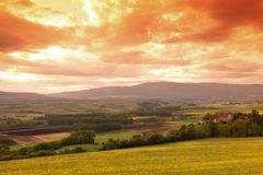 Green meadow under sunset sky Stock Photography