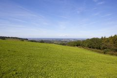 Green meadow and the vale of york Royalty Free Stock Photos