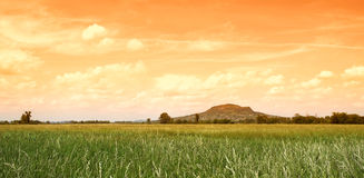 Green meadow and volcano in sunrise Royalty Free Stock Photography