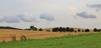 Rural landscape in Moen, Denmark. Green meadow and wheat field Royalty Free Stock Photos