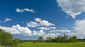 Green meadow and white clouds II Royalty Free Stock Image