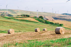 Green meadow with Wind turbines generating electricity.  stock photos