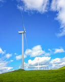 Green meadow with wind turbines generating electricity Stock Image