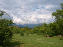 Green meadow XII. Spring peaceful landscape. Unedited photo Royalty Free Stock Photos
