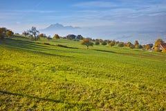 Green meadows above Lake Lucerne, near mount Rigi, Alps Royalty Free Stock Photography
