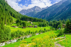 Green meadows, alpine cottages in Alps, Austria Royalty Free Stock Image