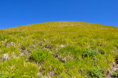 Green meadows on the Apennines mountains in summer Stock Photos