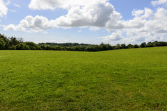 Green meadows, Cornwall Royalty Free Stock Images