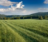 Green meadows and forested hills Royalty Free Stock Photos