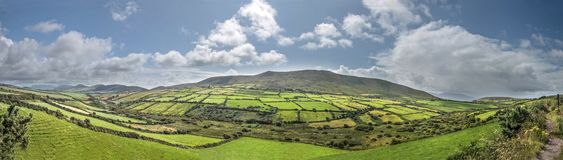 Green meadows panorama near Dingle Stock Photo