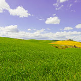 Green Meadows Stock Images