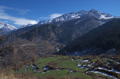 Green meadows and snow peaks in Himalaya Stock Photography